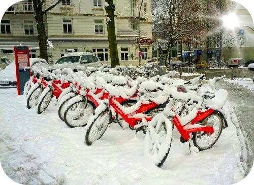 Schneerad