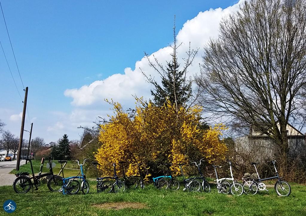 Frühling mit